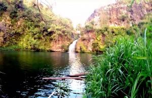 Le voyage de Mouss à l'île de la Réunion