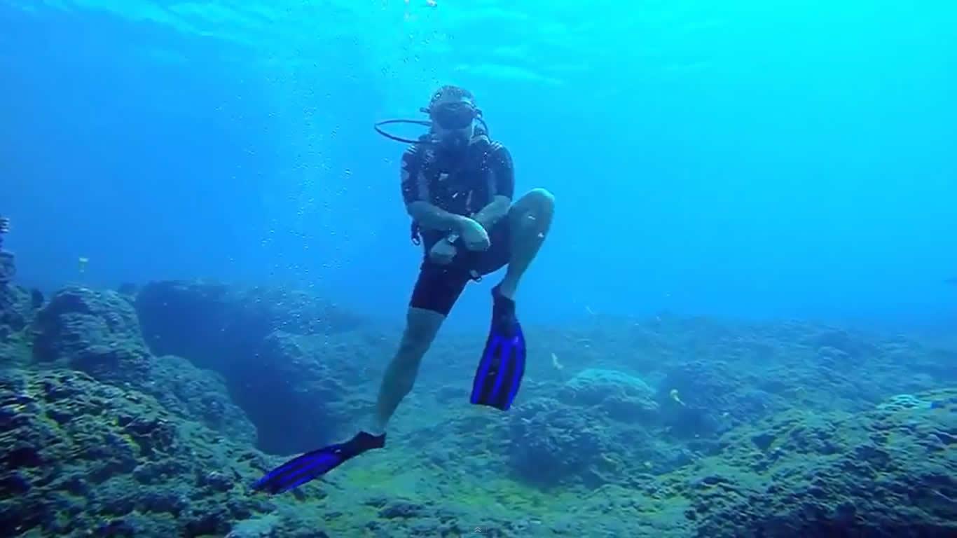 Gangnam Style underwater plongee reunion