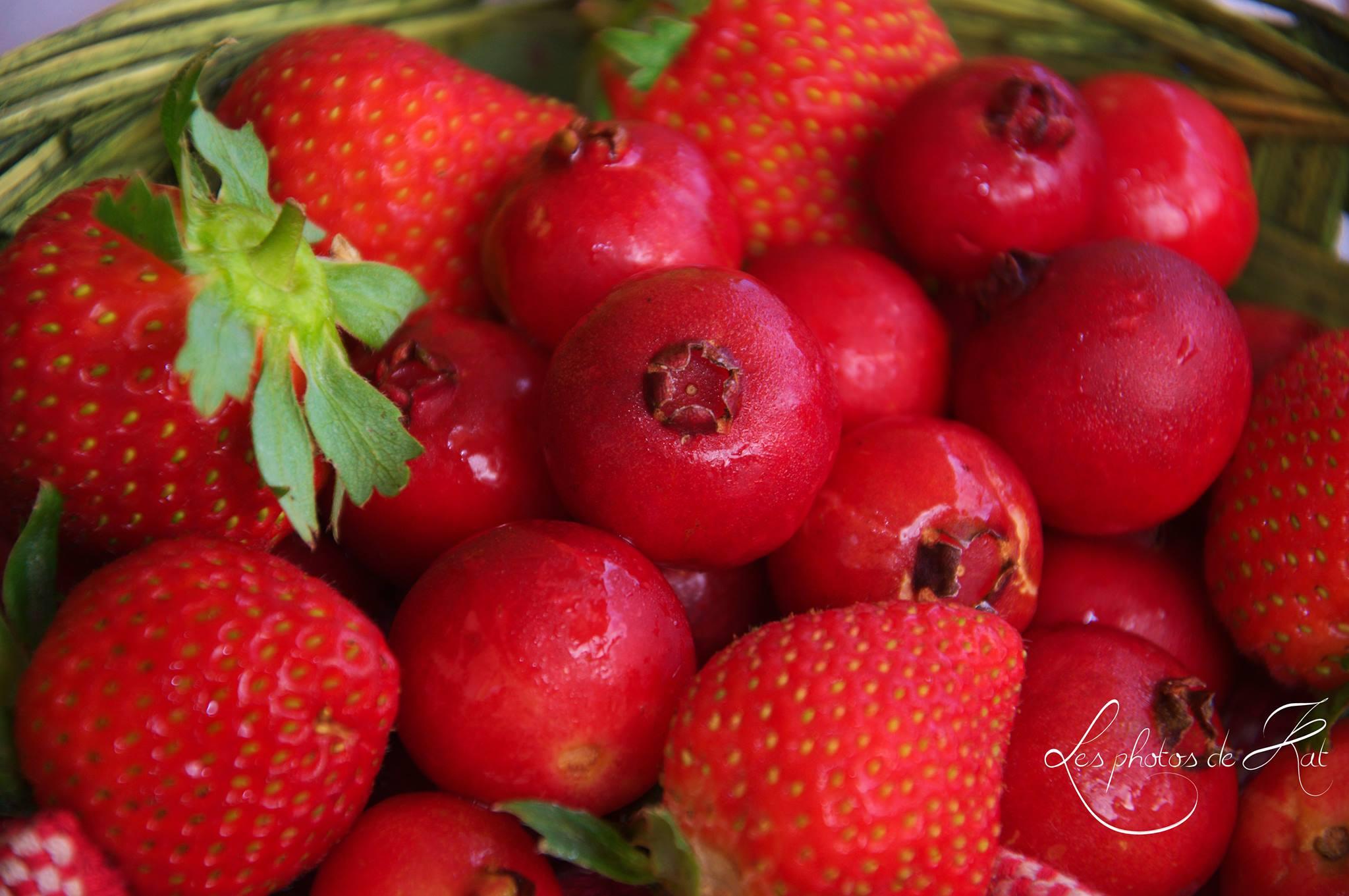 duo gourmand , fraise goyavier