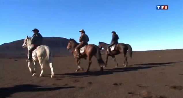 Balades à cheval à l'île de la Réunion