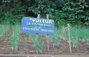 avertissement voleurs agriculteur réunion